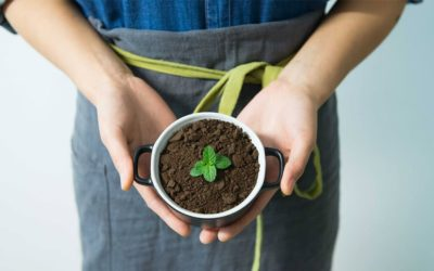 ¿Por qué consumir productos ecológicos?