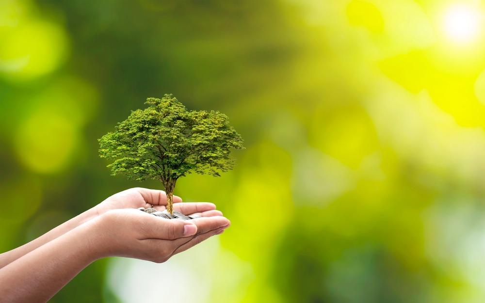 La Norma ISO 14000: qué es y para qué sirve